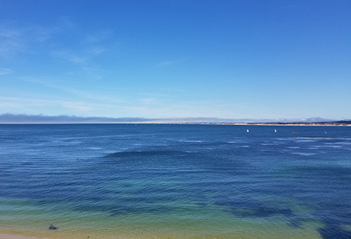 Monterey_16