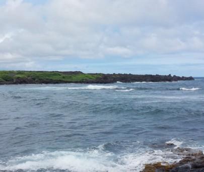 Punalu'u Beach 1