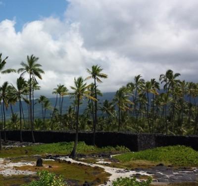 Pu'uhonua o Honaunau 2